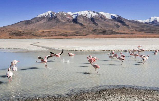 Top3 des plus belles villes boliviennes à visiter lors de son séjour